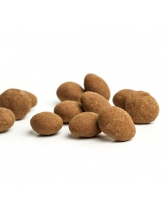 Chocolate-dipped almonds with cinnamon, Canelitas